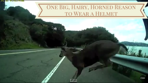 Why cyclists need helmets, even on rural roads [video]